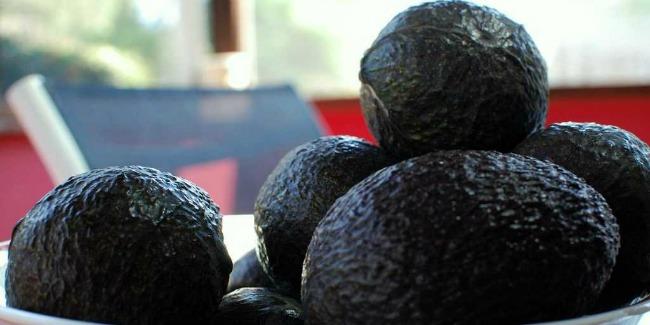 zdravlje 10 razloga zbog kojih je dobro jesti avokado 1 Zdravlje: 10 razloga zbog kojih je dobro jesti avokado