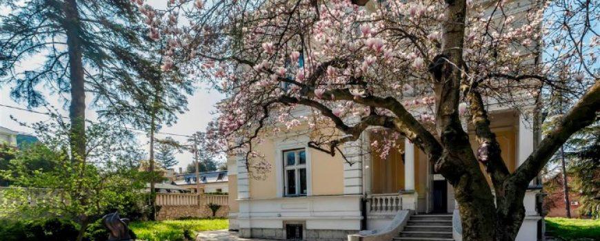 Savremeni kulturni centar: Kuća kralja Petra I