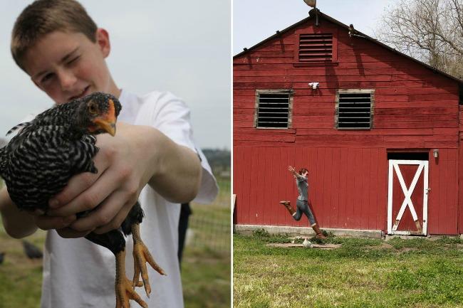 Mighty Girl Farm Najbolji blogovi i sajtovi o putovanjima