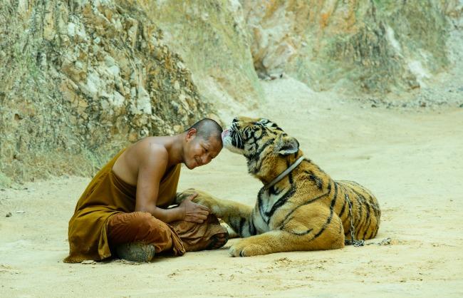 Tajland Puzzle1 Tajland: Hedonistički raj, zemlja osmeha i večne slobode