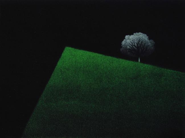 Zarko Smiljanic grafike 042 Velika samostalna izložba Žarka Smiljanića u Francuskoj