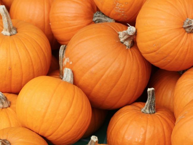 bundeve Plodovi jeseni donose zdravlje