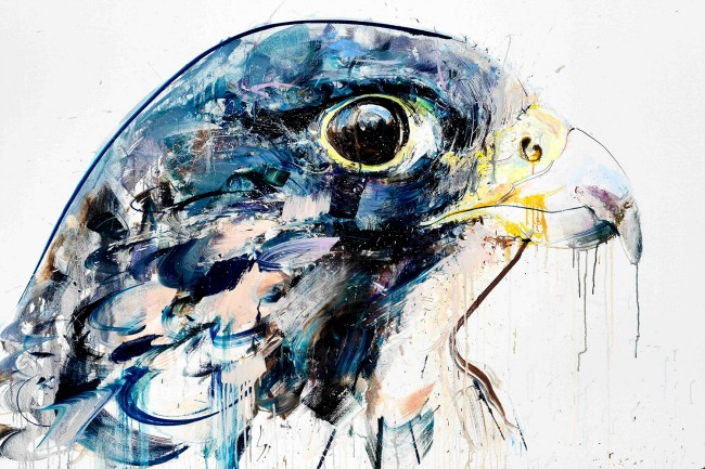 dejv vajt umetnicka dela inspirisana divljinom 6 Dejv Vajt: Umetnička dela inspirisana divljinom