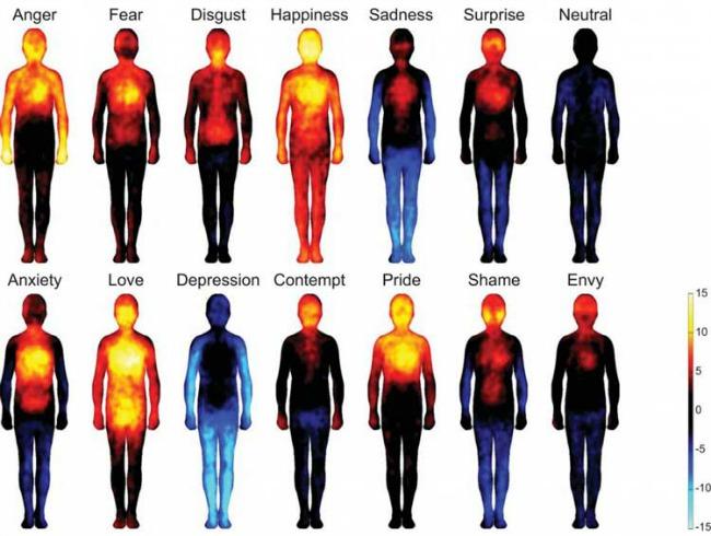 emotionsheatmap1 Kako naše telo reaguje na emocije