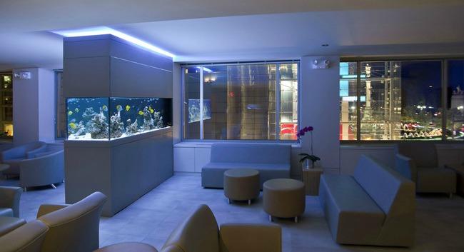 enterijer najlepsi sobni akvarijumi na svetu 10 Enterijer: Najlepši sobni akvarijumi na svetu