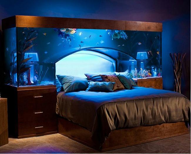 enterijer najlepsi sobni akvarijumi na svetu 5 Enterijer: Najlepši sobni akvarijumi na svetu
