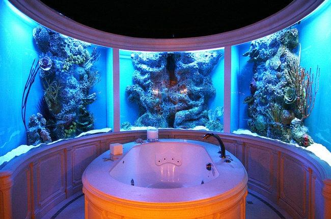 enterijer najlepsi sobni akvarijumi na svetu 8 Enterijer: Najlepši sobni akvarijumi na svetu