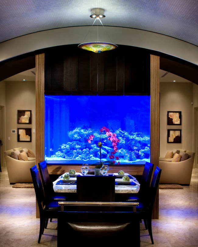 enterijer najlepsi sobni akvarijumi na svetu 9 Enterijer: Najlepši sobni akvarijumi na svetu