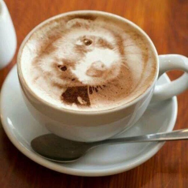 kafa 7 Istorija dekorisanih kafa