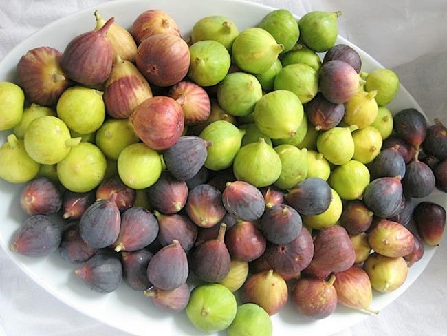 smokve Plodovi jeseni donose zdravlje