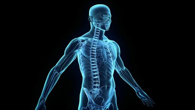 10 neverovatnih cinjenica o ljudskom telu 3 10 neverovatnih činjenica o ljudskom telu
