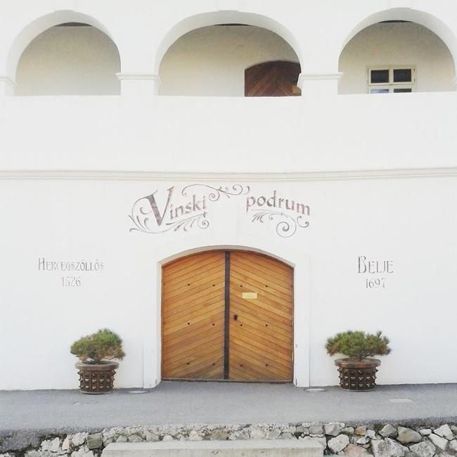 belje vina hrvatska vinarija vinograd 20 Instagram izveštaj: Vina Belje
