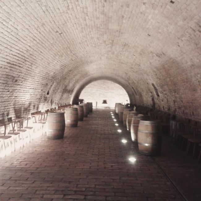 belje vina hrvatska vinarija vinograd 9 Instagram izveštaj: Vina Belje