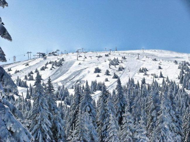 kopaonik 4 10 razloga zašto da skijate na Kopaoniku