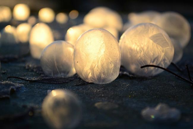 smrznuti mehurici 4 Mehurići od pene kao zimska umetnost