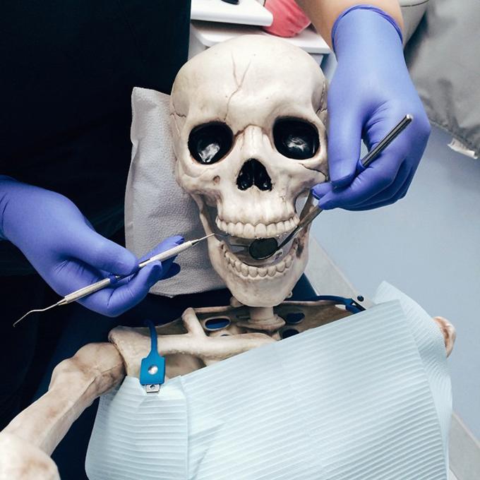 skeli kod zubara I kostur ima svoj nalog na Instagramu