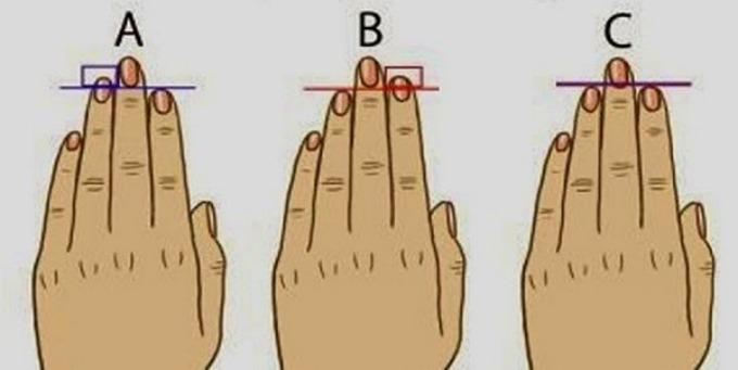 duzina prstiju Šta dužina prstiju govori o tebi