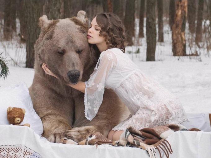 u zagrljaju medveda U zagrljaju medveda zbog kampanje
