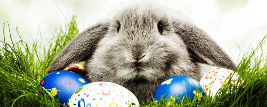 Uskršnji običaj: Zašto farbamo jaja?