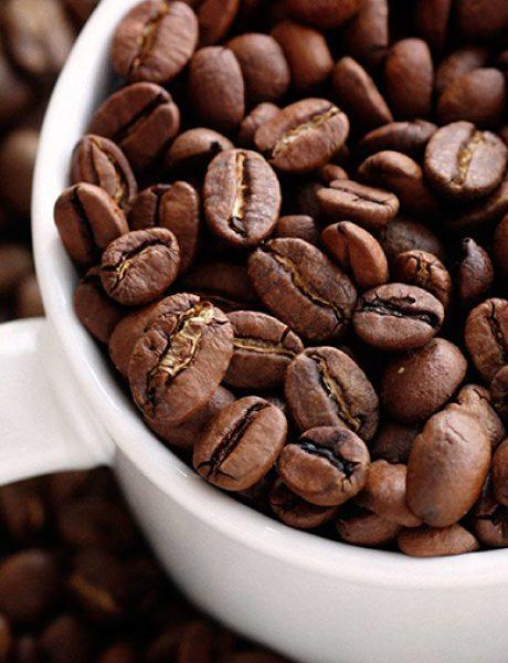 Koja domaća kafa je dobila nagradu za vrhunski kvalitet?