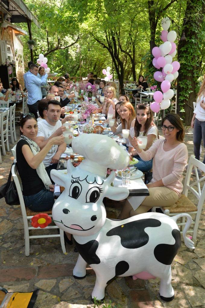 moja kravica 1 Moja Kravica jogurt   ukus oko koga se svi slažu