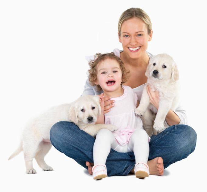 psi mogu da otkriju rak 1 Verovali ili ne: Psi mogu da otkriju rak