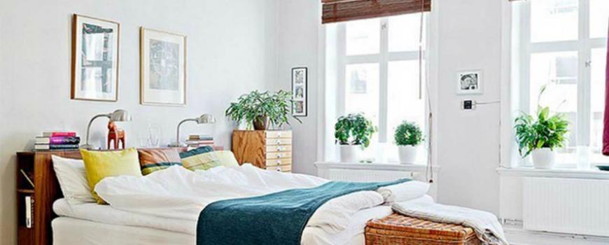 Kućne biljke za bolji san