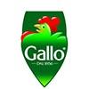 RISO GALLO LOGO 05.09.13 1024x936 Modna varjača: Stil Lejdi Gage