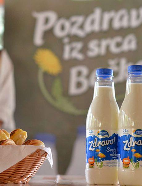 Sa naših salaša stiže mleko pravog vojvođanskog kvaliteta – Zdravo!