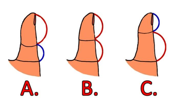 kakvi ste u vezi 4 Dužina palca otkriva kakvi ste u vezi
