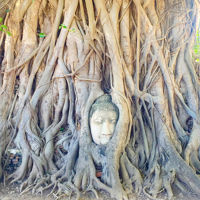 Ayutthaya 2 Tajland i Bangkok: Vodič za putovanje jedne gradske cice