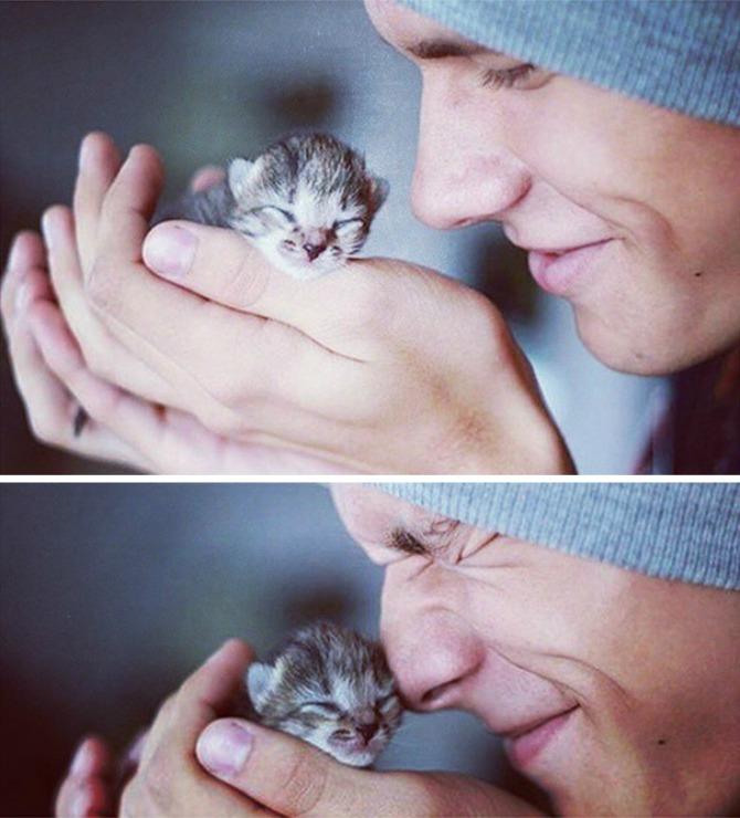 Instagram Zgodni frajeri i preslatki mačići 1 Instagram: Zgodni frajeri i preslatki mačići