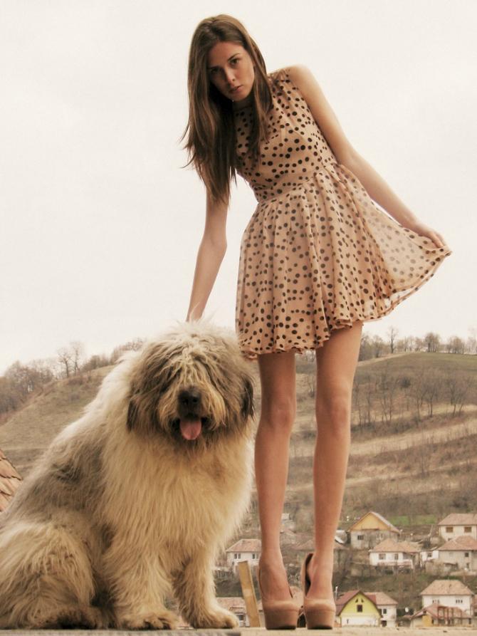 Pas Sve zbog čega smo lepe TRAJNO, a ne samo fizički