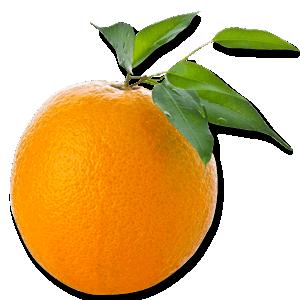 orange PNG811 Kviz: Koji model cipela na štiklu bi trebalo da nosiš?