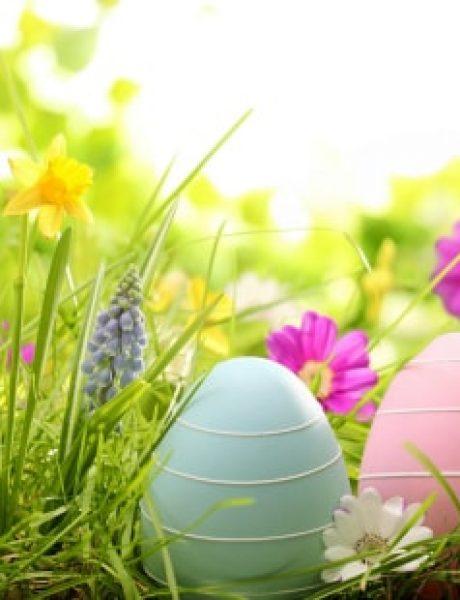 Zanimljive ideje za DEKORISANJE uskršnjih jaja (1. deo)