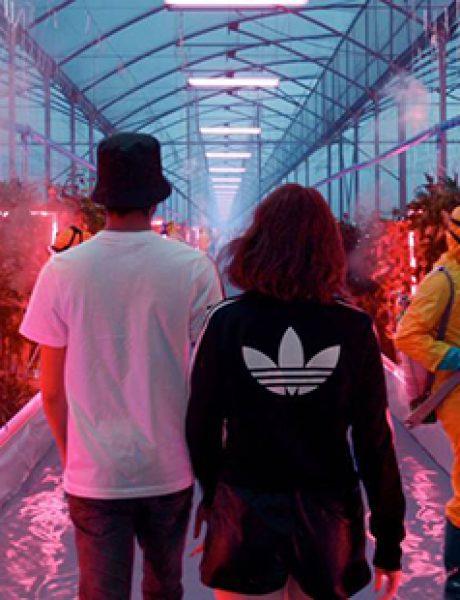 adidas Originals nagrađen sa dva zlatna i dva bronzana Lava