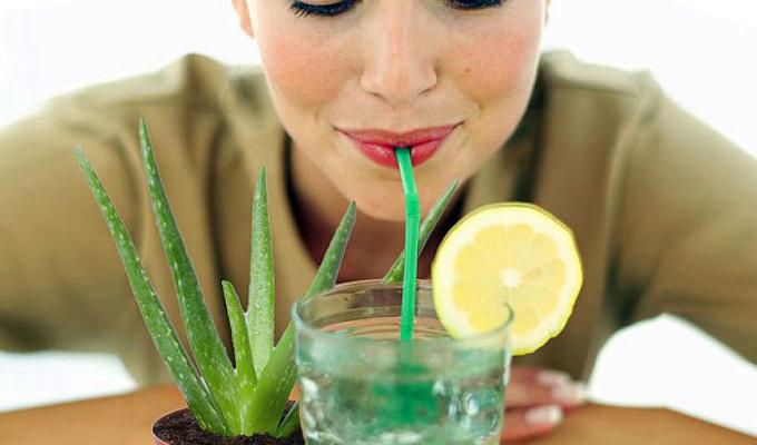 aloe vera 8 prirodnih namirnica koje će učiniti da tvoja koža lica UVEK bude mlada
