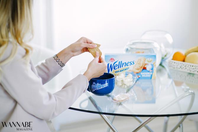 Wellness breakfast 51 Savršen doručak za tvoj svaki dan: Wellness Breakfast