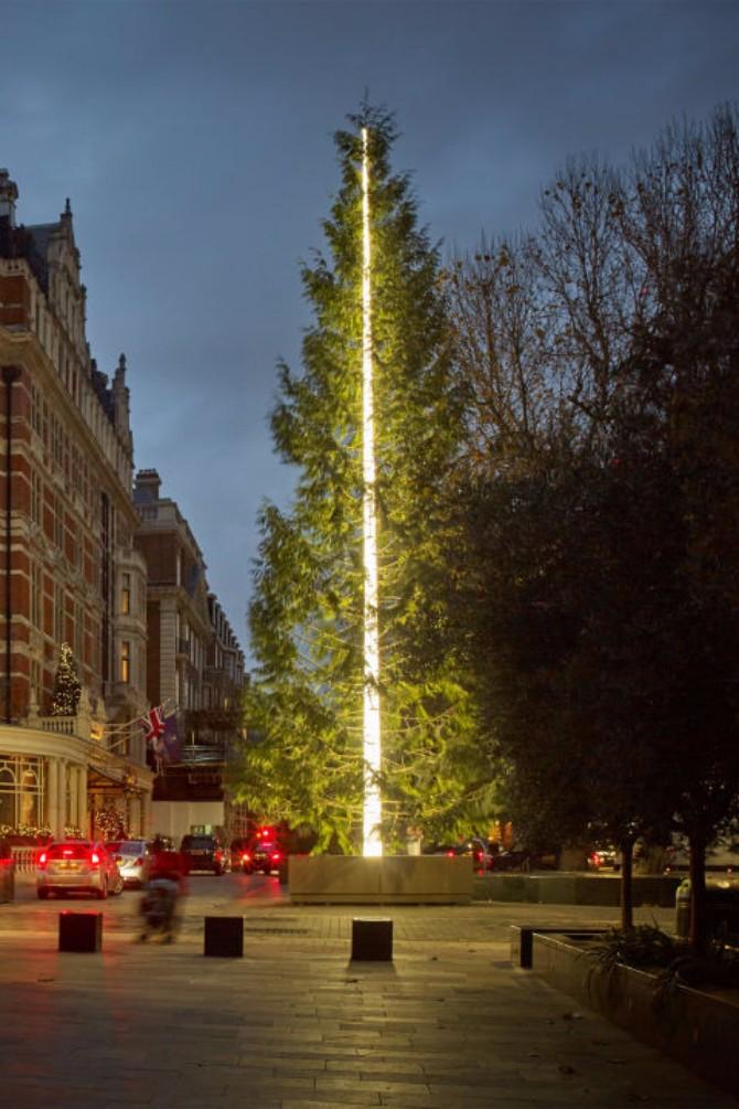 22 Ostavljaju BEZ DAHA: Ovo su NAJLEPŠE novogodišnje jelke u Londonu!