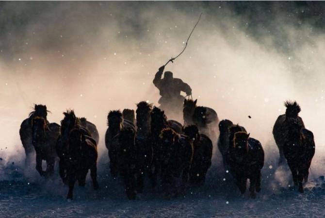 Winter Horseman Top 10 najboljih fotografija na svetu u 2016. godini