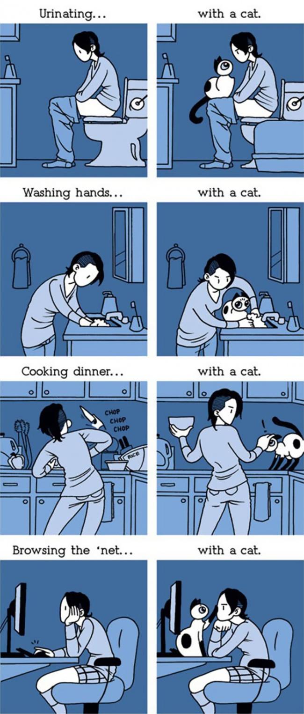 macke 3 Otkačene, a tako istinite ilustracije koje će razumeti SVAKI vlasnik mačaka