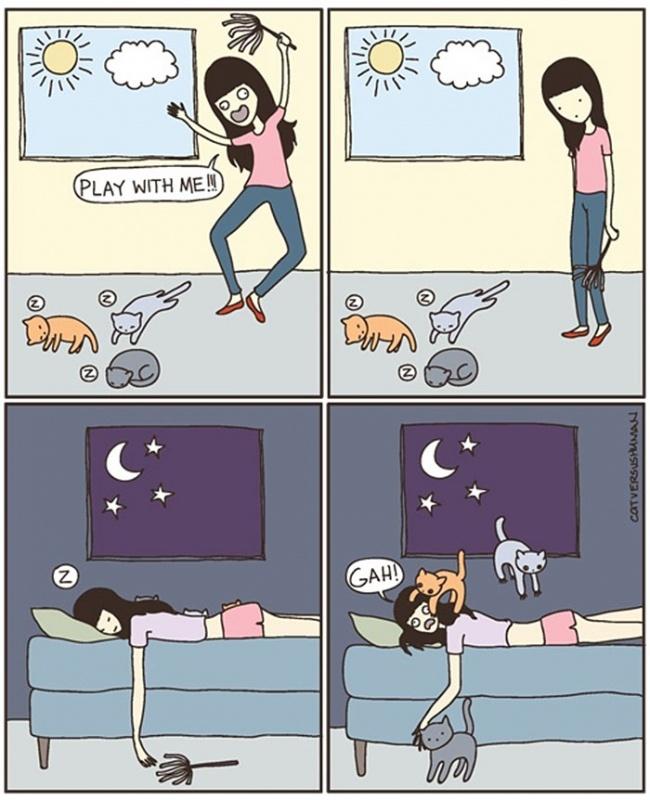 macke 4 Otkačene, a tako istinite ilustracije koje će razumeti SVAKI vlasnik mačaka