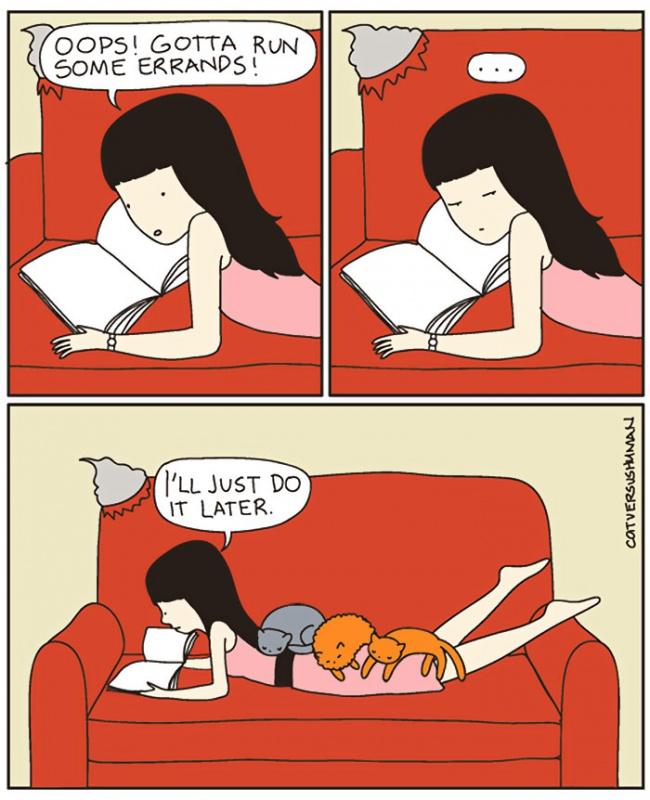 macke 8 Otkačene, a tako istinite ilustracije koje će razumeti SVAKI vlasnik mačaka