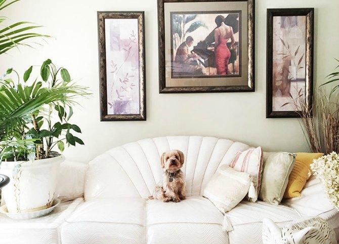 jastucici n 7 stvari koje svaka stylish devojka ima u svom domu