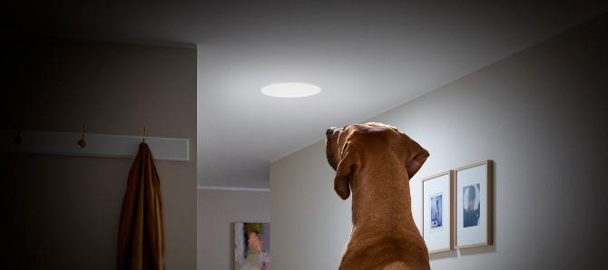 velux4 Kako sam rešila problem sa osvetljenjem mračnog stana (BLOG)