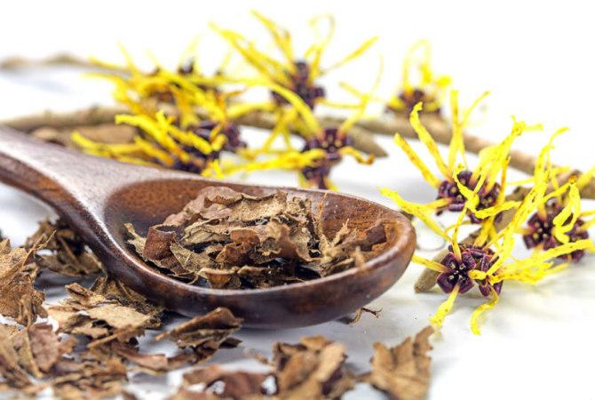 hamamelisa 4 prirodna načina za lečenje akni i bubuljica