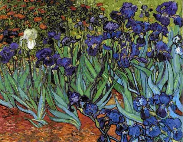 Irisi 10 najskupljih dela Van Goga
