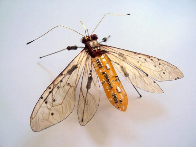 kompjuter leptir2 Naučno fantastična umetnost   kad bagovi izlete iz kompjutera