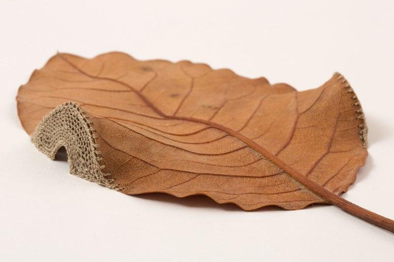 lisce 1 #differentart: Umetnost šivenja lišća i heklanja kamenja
