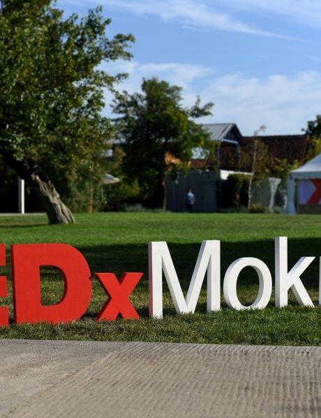 Zašto ne smeš da propustiš TEDxMokrin konferenciju?